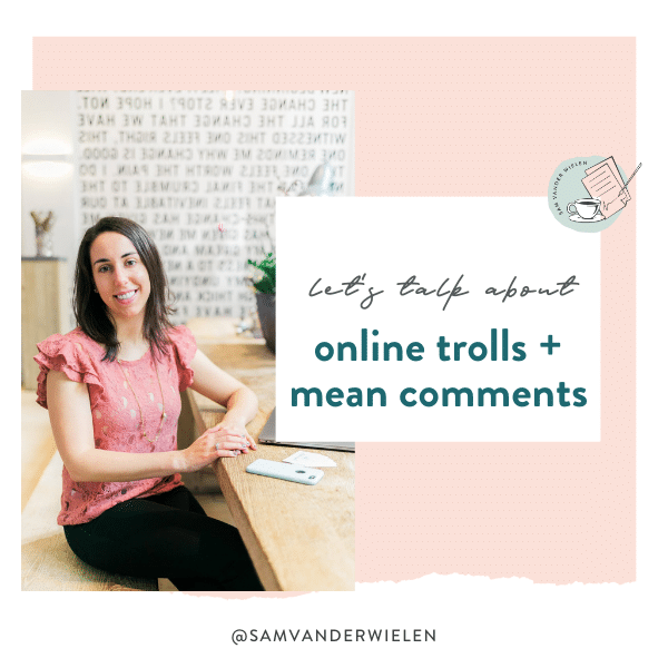 online trolls mean comments, sam vander wielen